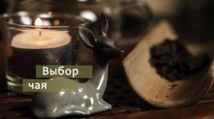 video vybor tea 300x167 - Как выбрать чай