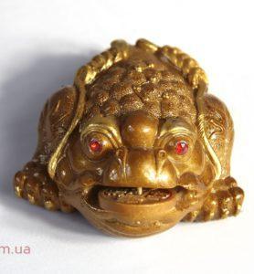 Трёхлапая жаба меняющая цвет  - фото