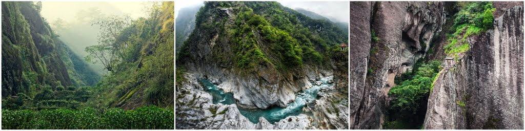 Родиной улунов принято считать север провинции Фуцзянь
