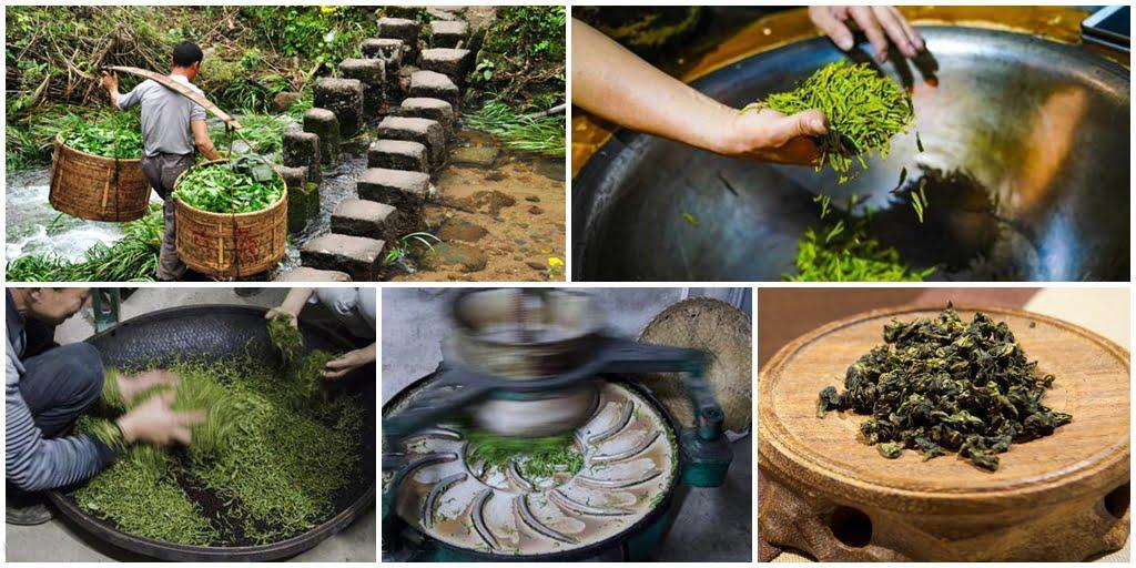 Этапы производства южнофуцзяньских улунов